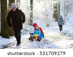 Active Healthy Grandparents An...