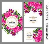 vintage delicate invitation... | Shutterstock .eps vector #531717544