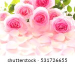 Stock photo beautiful bunch of pink roses on rose petals background 531726655