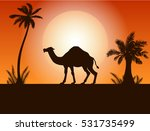 Camel And Palm Trees In The...