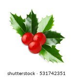holly berry leaves christmas... | Shutterstock . vector #531742351