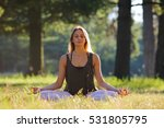 yoga woman in meditation pose ... | Shutterstock . vector #531805795