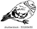 vector pigeon | Shutterstock .eps vector #53183650