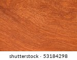 texture of tropical wood - stock photo