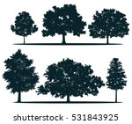 Stock vector tree silhouettes red maple sugar maple oak poplar green oak birch 531843925