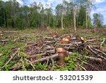chopping wood | Shutterstock . vector #53201539