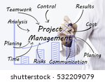 Small photo of Businessman hand drawing Project Management, concept