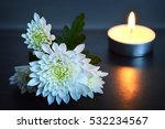 candle and white flowers | Shutterstock . vector #532234567