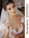 Beautiful Bride Portrait...