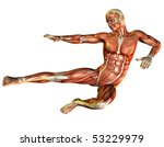 Muscle And Motion Study In Men