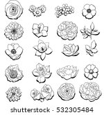 flower set | Shutterstock .eps vector #532305484