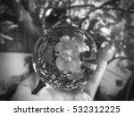 Glass Ball Display  Pink Flowe...