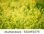 beautiful landscape the... | Shutterstock . vector #532493275
