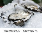 oysters on the ice  | Shutterstock . vector #532493971