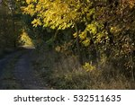 autumn time central russia. | Shutterstock . vector #532511635
