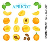 vector set of ripe apricots... | Shutterstock .eps vector #532561009