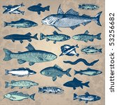 Vintage Fish Drawings Set ...
