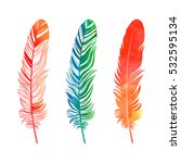 watercolor feathers set on... | Shutterstock .eps vector #532595134