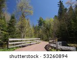 into the forest | Shutterstock . vector #53260894