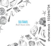 seashell hand drawn vector... | Shutterstock .eps vector #532646734