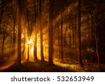 sunbeams shining through a... | Shutterstock . vector #532653949