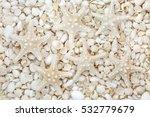 starfish and white seashell... | Shutterstock . vector #532779679