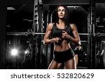 beautiful girl fitness bikini... | Shutterstock . vector #532820629