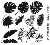 Stock vector set of palm leaves silhouettes isolated on white background vector eps 532844464