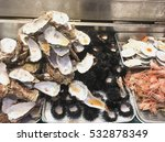 sea shells.  variety of seafood ... | Shutterstock . vector #532878349