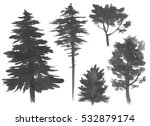 silhouettes of trees ... | Shutterstock . vector #532879174