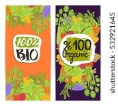 organic food vertical flyers...