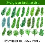 collection of evergreen... | Shutterstock .eps vector #532940059