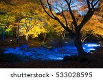 night view of maple  in japan | Shutterstock . vector #533028595