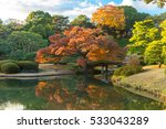 autumn color in japan | Shutterstock . vector #533043289