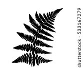 Fern 22. Silhouette Of A Fern...