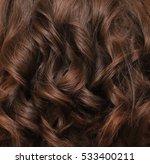 beautiful brown hair. brown... | Shutterstock . vector #533400211
