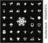 snowflake icon.  agriculture ... | Shutterstock . vector #533439271