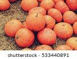 Pumpkins Orange Pumpkins