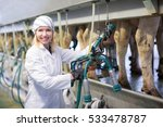 Farmer In Barn With Automatica...