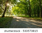 park and the path illuminated... | Shutterstock . vector #533573815
