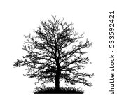 tree without leaves vector... | Shutterstock .eps vector #533592421