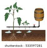 drip irrigation system  vector... | Shutterstock .eps vector #533597281