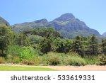 kirstenbosch botanical garden... | Shutterstock . vector #533619331