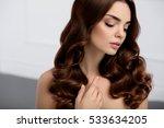healthy hair. beautiful woman... | Shutterstock . vector #533634205