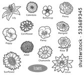 vector set of flowers  black... | Shutterstock .eps vector #533689345