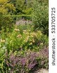 Flowerbed Of Alstromeria Lilie...