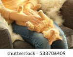 Stock photo cute cat lying on its owner s knees close up view 533706409