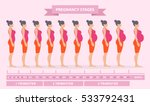 vector illustration of pregnant ... | Shutterstock .eps vector #533792431