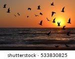 seagulls silhouettes in flight...   Shutterstock . vector #533830825