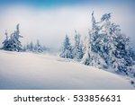 bright morning scene in the... | Shutterstock . vector #533856631